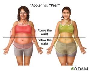 Body Shape Guide – The HoneyGold Guru